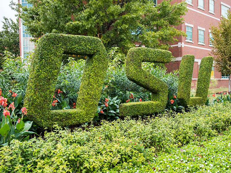 A topiary spells out OSU on campus.